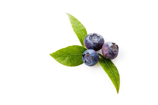 Blueberry「Blueberries, Vaccinium myrtillus」:スマホ壁紙(13)