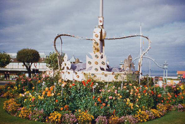 Flowerbed「Coronation Year」:写真・画像(18)[壁紙.com]