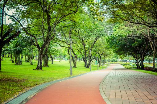 St「Paved path in urban park, Kuala Lumpur, Federal Territory of Kuala Lumpur, Malaysia」:スマホ壁紙(1)