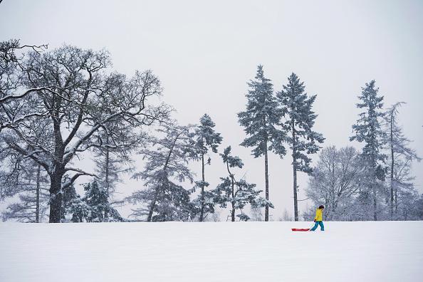 Snow「Heavy Snow Hits The UK」:写真・画像(10)[壁紙.com]