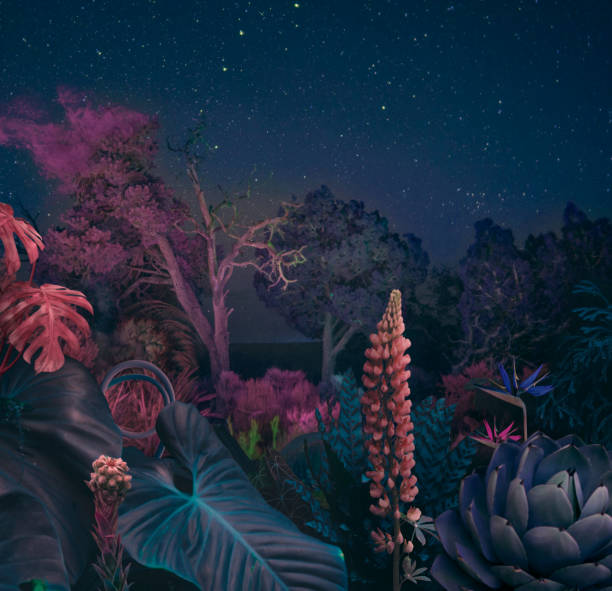 Surreal night forest:スマホ壁紙(壁紙.com)