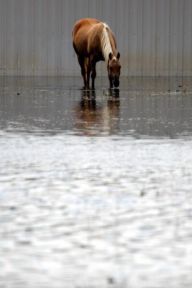 Hurricane Ike「Hurricane Ike Makes Landfall On Texas Coast」:写真・画像(2)[壁紙.com]