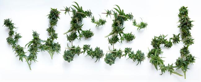 Activist「arrangement of marijuana buds spelling WEED」:スマホ壁紙(11)