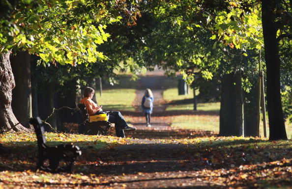 Bench「Autumn Colours Throughout The UK」:写真・画像(2)[壁紙.com]