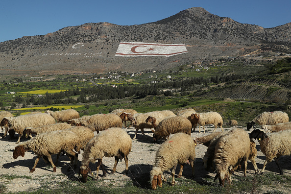 Republic Of Cyprus「Reunification Beckons, Yet Pain And Grievances Linger In Cyprus」:写真・画像(6)[壁紙.com]