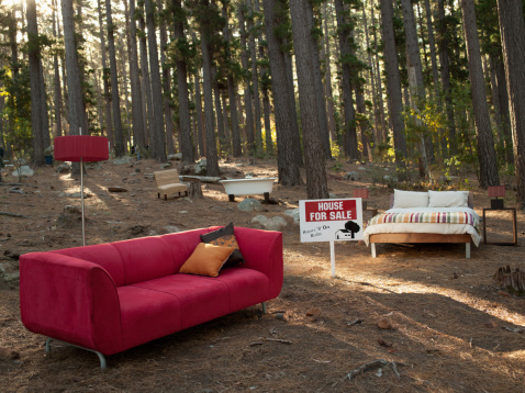 Remote Location「Home furnishings for sale in the middle of the woods」:スマホ壁紙(7)