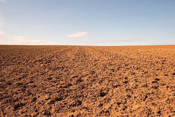 Empty muddy field of red soil:スマホ壁紙(壁紙.com)