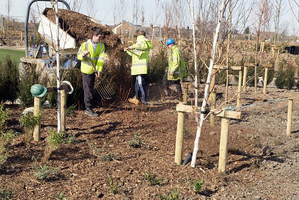 King's Lynn「Landscapers spreading mulch in a park using an articulated dumper, Kings Lynn, Norfolk, UK」:写真・画像(8)[壁紙.com]