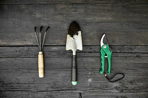 Gardening「Three gardening tools on dark wood」:スマホ壁紙(12)