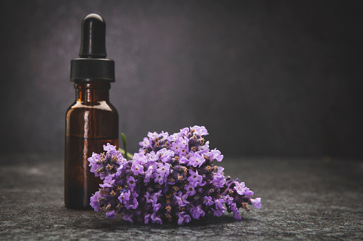 Branch - Plant Part「A bottle of lavender essential oil with fresh lavender twigs」:スマホ壁紙(9)