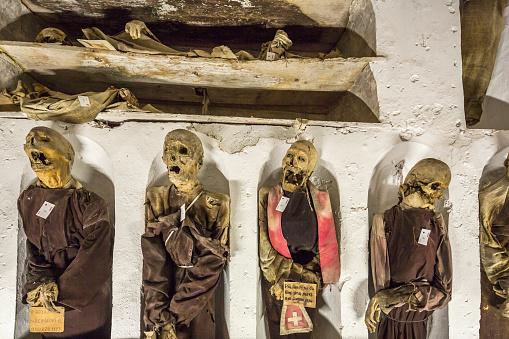 建築「Convento (Monastery) dei Cappuccini, the Catacombe dei Cappuccini (Catacombs of the Capuchin Monks), detail」:スマホ壁紙(1)