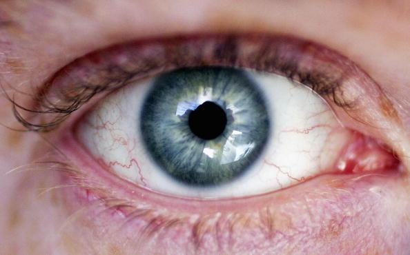 Iris - Eye「Biometrics Considered For National Identity Card」:写真・画像(11)[壁紙.com]