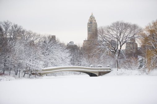 Footbridge「USA, New York City, Central Park in winter」:スマホ壁紙(19)