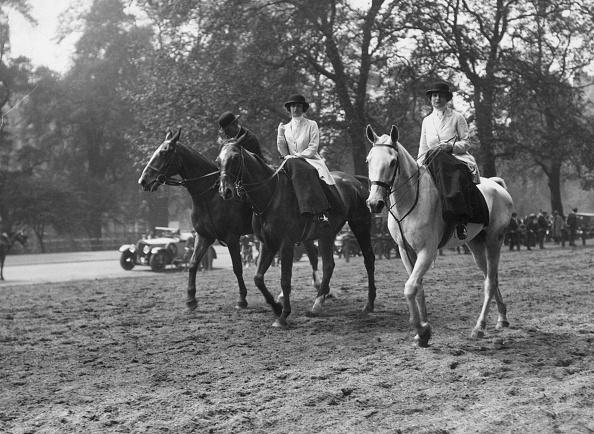 Horse「Rotten Row」:写真・画像(6)[壁紙.com]