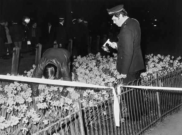 Flowerbed「Royal Kidnap Investigation」:写真・画像(14)[壁紙.com]