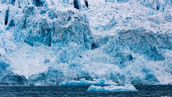 Pack Ice「the birds and the glacier, Spitzbergen, Svalbard」:スマホ壁紙(1)