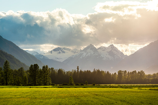 British Columbia「Landscape with field, forest and mountains,PembertonValley, British Columbia, Canada」:スマホ壁紙(10)