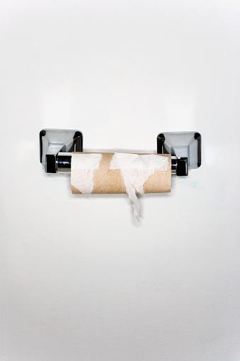 Toilet Paper「Finished Toilet Paper Roll」:スマホ壁紙(14)