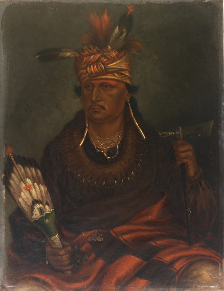 Animal Body Part「Chetan-Woa-Kutoa-Mang (The Hawk Who Hunts Walking)」:写真・画像(7)[壁紙.com]