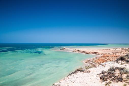 Western Australia「Australia Shark Bay World Heritage Site」:スマホ壁紙(16)