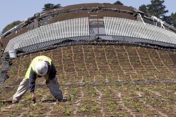 David Paul Morris「California Academy Of Sciences Previews Living Roof」:写真・画像(8)[壁紙.com]