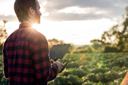 田畑「夕暮れ時の無人リモート コント ローラーを使用して男農家パイロット」:スマホ壁紙(12)