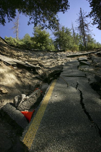 Plant Bark「More Than 2,000 Miles Of Fire Access Roads Damaged In Southern California」:写真・画像(7)[壁紙.com]