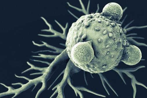 Immune System「T Lymphocytes and Cancer Cell」:スマホ壁紙(9)