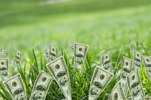 American One Hundred Dollar Bill「100 dollar bills growing in grass」:スマホ壁紙(1)