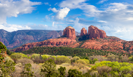 Sedona「Cathedral Rock near Sedona」:スマホ壁紙(5)