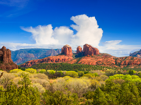 Sedona「Cathedral Rock near Sedona」:スマホ壁紙(10)