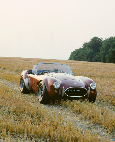 Grass Family「1966 AC Cobra 289」:写真・画像(12)[壁紙.com]