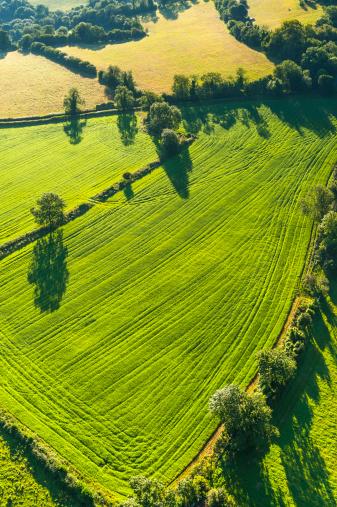 Plowed Field「Vibrant green pasture patchwork fields picturesque rural landscape aerial photograph」:スマホ壁紙(0)