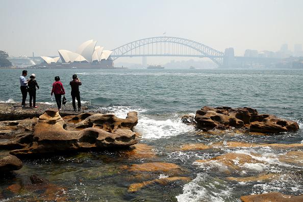 Sydney「Smoke Haze Blankets Sydney As Bushfires Continue To Burn Across NSW」:写真・画像(17)[壁紙.com]