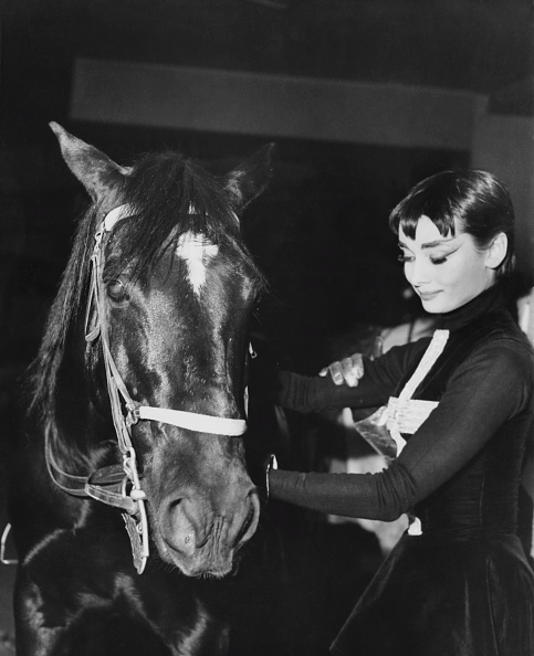 Horse「Hepburn With Circus Horse」:写真・画像(3)[壁紙.com]