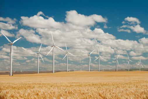 Power Equipment「USA, Oregon, Wasco, Wheat field and wind farm in bright sunshine under blue sky」:スマホ壁紙(18)
