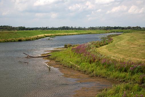 North Brabant「Restored tidal creek in Dutch Biesbosch National Park」:スマホ壁紙(0)
