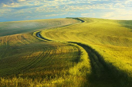 環境「トスカーナの曲がりくねった田舎道」:スマホ壁紙(3)