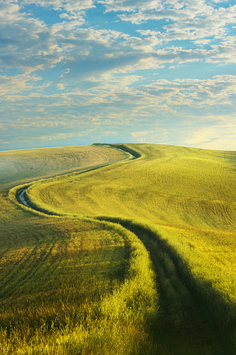 Footpath「Winding country road in Tuscany」:スマホ壁紙(4)