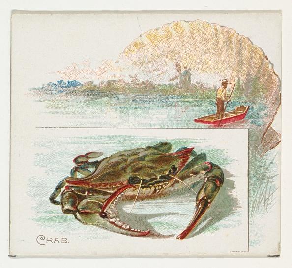 1880-1889「Crab」:写真・画像(18)[壁紙.com]