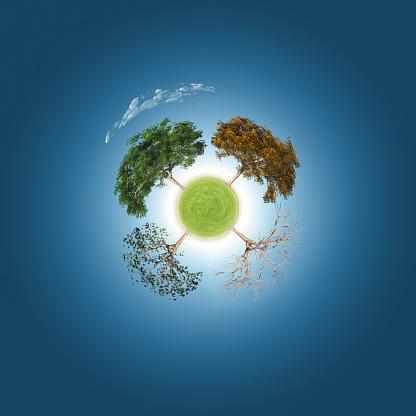Digital Composite「Trees through four seasons」:スマホ壁紙(13)