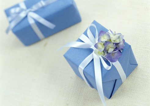 Hydrangea「Present」:スマホ壁紙(3)