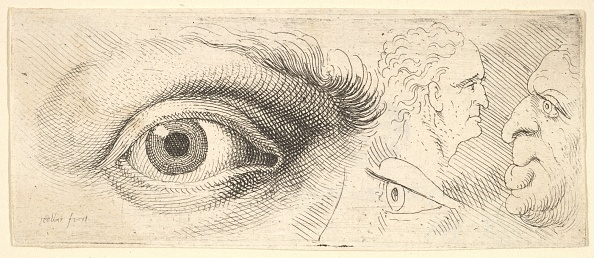Iris - Eye「Two Eyes And Two Heads」:写真・画像(10)[壁紙.com]