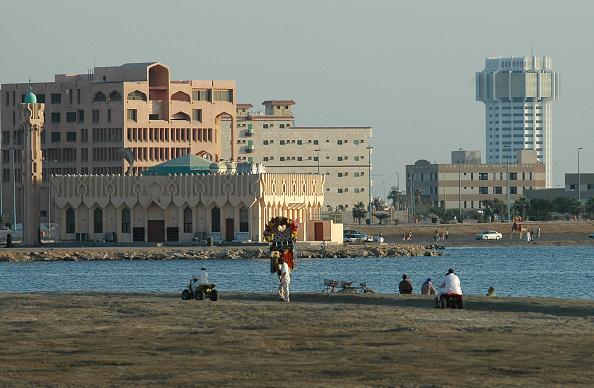 Water's Edge「Jeddah Camel」:写真・画像(14)[壁紙.com]