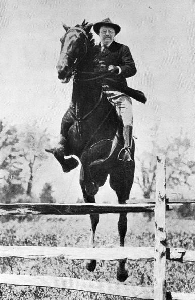 Horse「Theodore Roosevelt」:写真・画像(18)[壁紙.com]