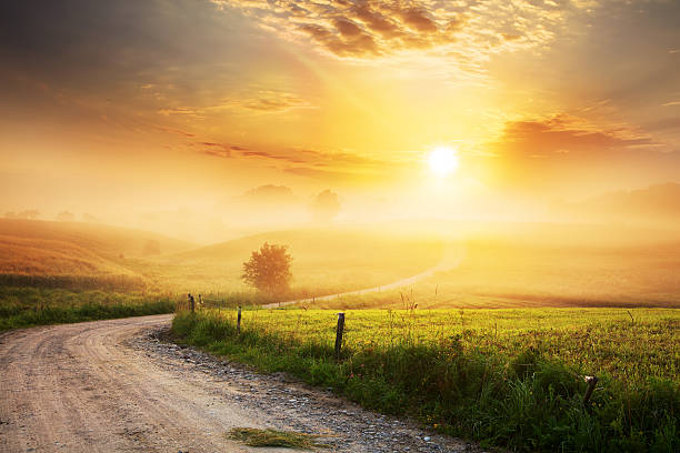 巻線ファーム Road から霧の風景:スマホ壁紙(壁紙.com)