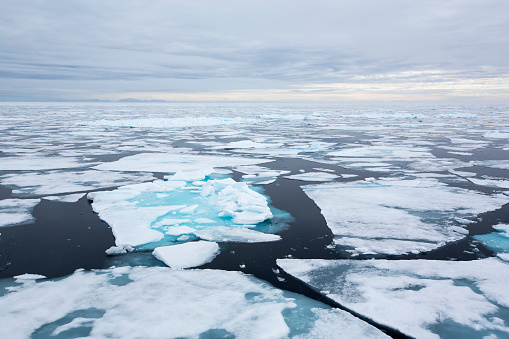 Pack Ice「Rotten sea ice at over 80 degrees North off the north coast of Svalbard」:スマホ壁紙(13)
