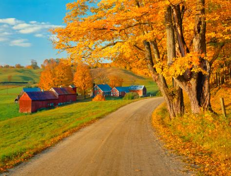 グリーン山脈「秋のカントリーサイドでバーモント」:スマホ壁紙(5)