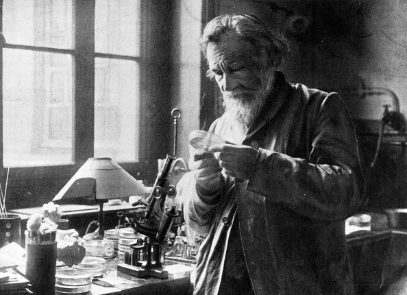 1900-1909「Ilya Ilich Mechnikov」:写真・画像(8)[壁紙.com]