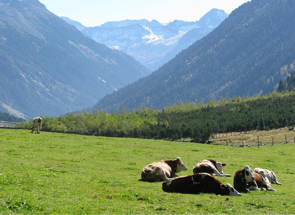 Mountain Range「Hohe Tauern. Krimml Achen Valley.」:写真・画像(2)[壁紙.com]